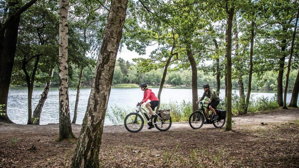 Lucky Bike_E-Trekking_Kaufberatung_Diamant