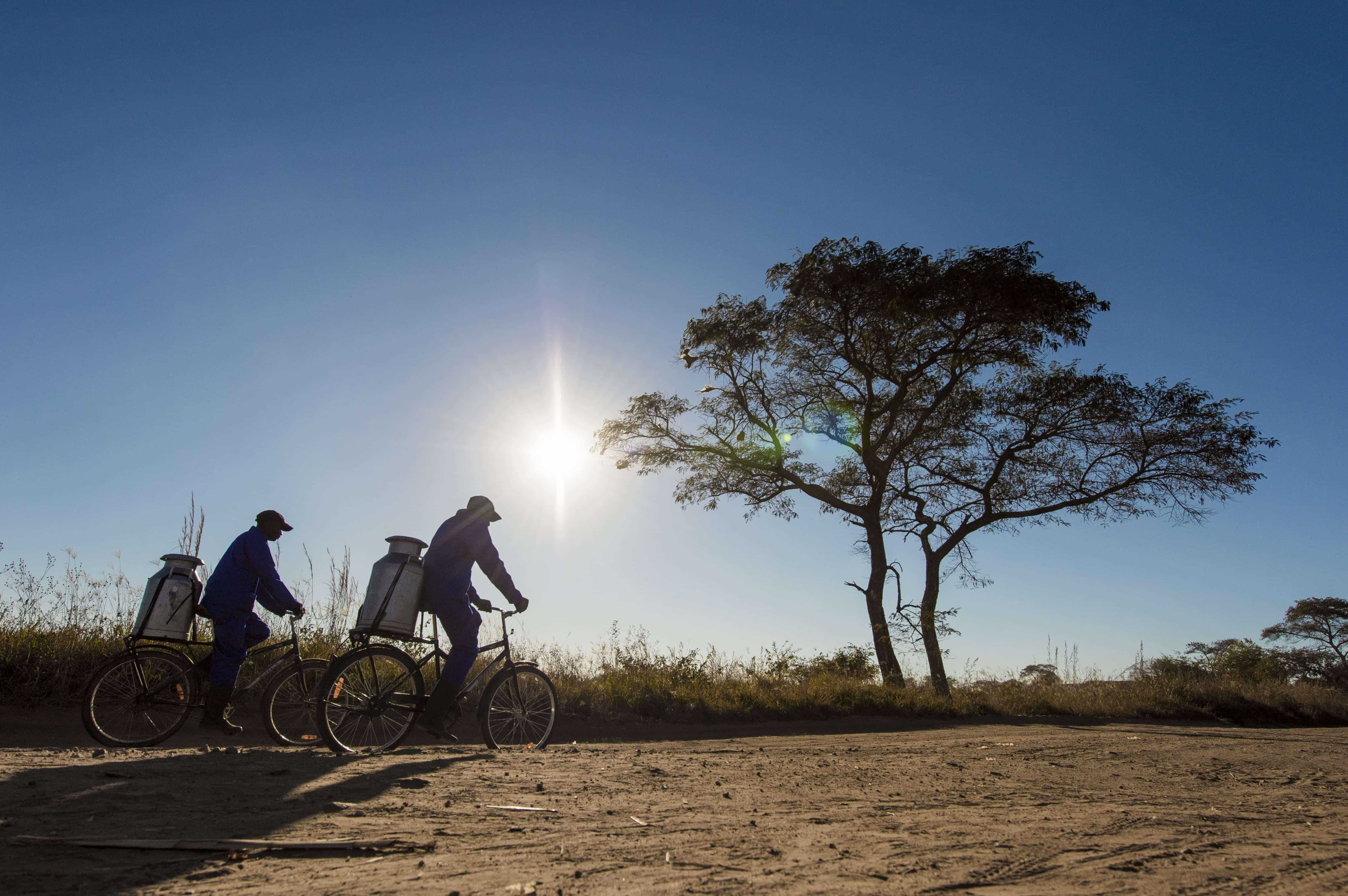 WBR Fahrräder für den Transport