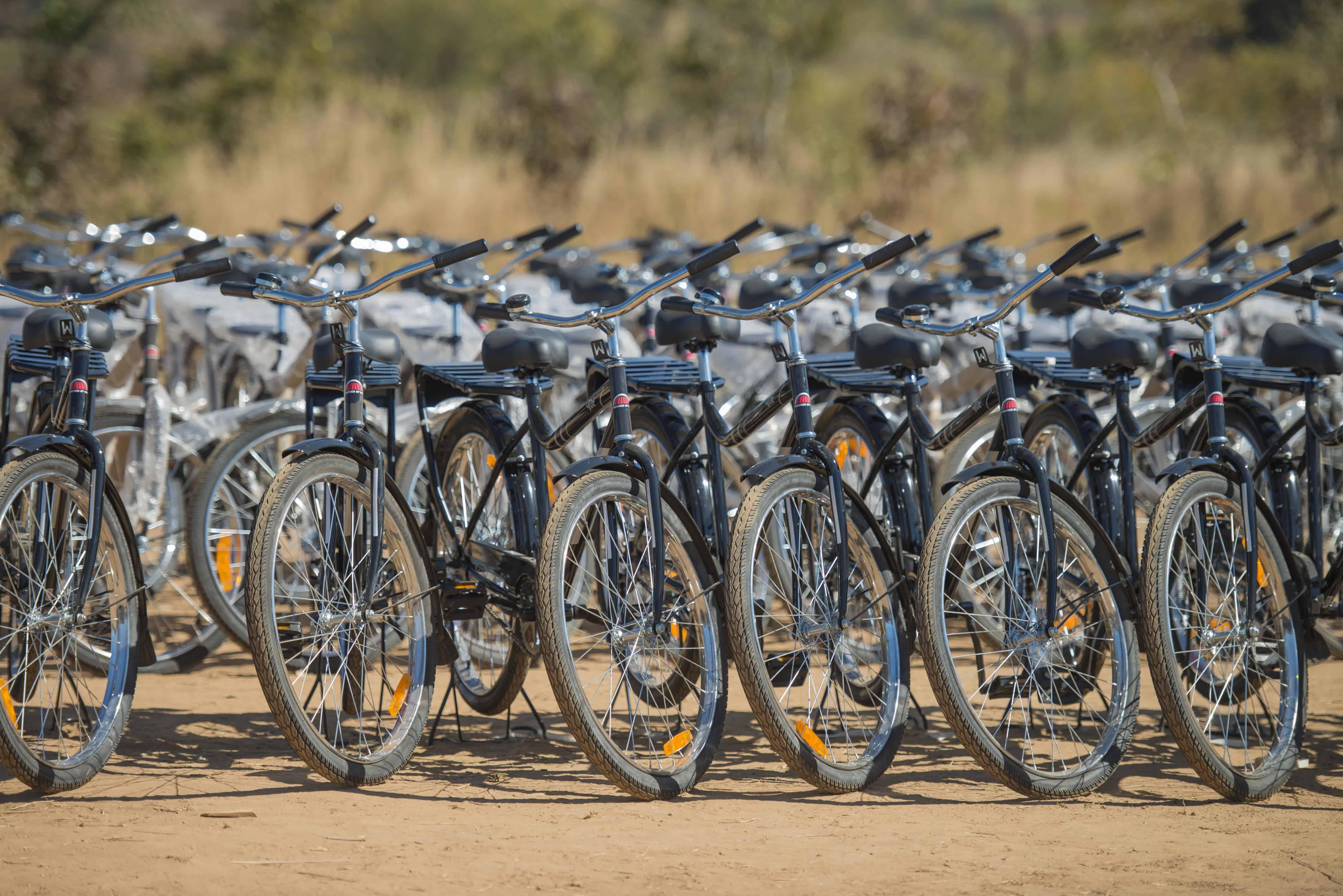 Buffalo Fahrräder