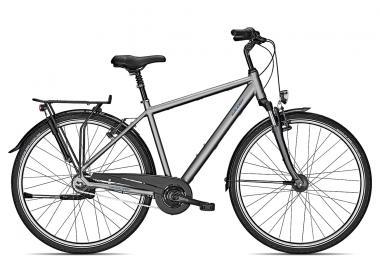 fahrräder > Fahrräder: Raleigh  CHESTER 8 R Herren 2021