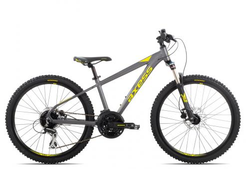 Axess Stipe Pro 24 2019 30 cm | grey yellow