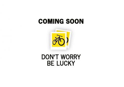 CUBE Icon Trinkflasche 750 ml 0,75 Liter   blue