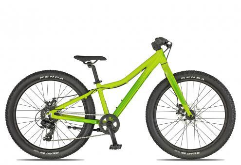 Scott Roxter 24 2019 31 cm   rio green/green