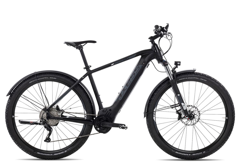 E-Bikes: Axess  FORCE 2021