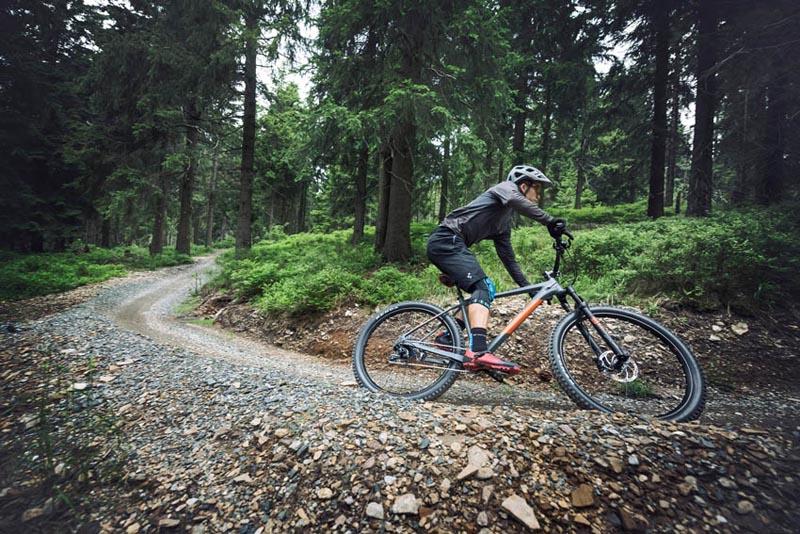 Mountainbikes von Cube online kaufen