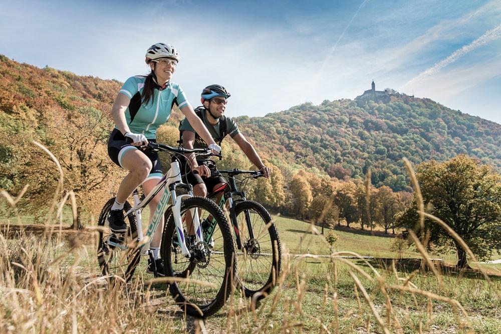 Ein MTB und E-MTB von Focus Bikes günstig online kaufen