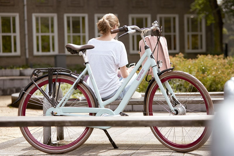 Gazelle Hollandräder, wie das Modell Esprit online kaufen