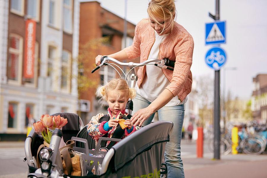 Lastenräder von Babboe Gazelle Hercules und Tern bei Lucky Bike im Online-Shop kaufen